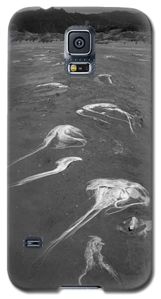 Galaxy S5 Case featuring the photograph Flight Of The Ocean Hairs by Marie Neder