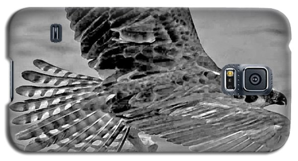 Flight Of The Osprey Bw Galaxy S5 Case