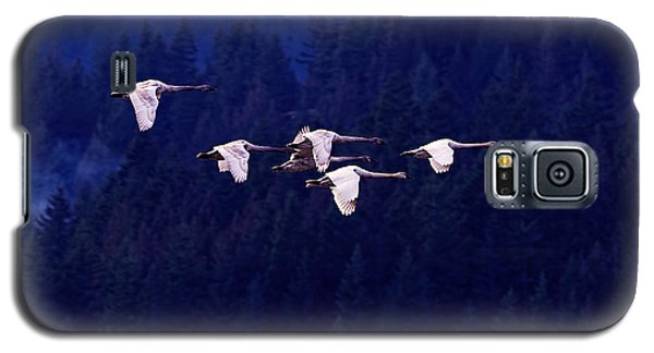 Flight Of The Swans Galaxy S5 Case by Sharon Talson