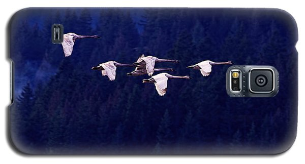 Swan Galaxy S5 Case - Flight Of The Swans by Sharon Talson