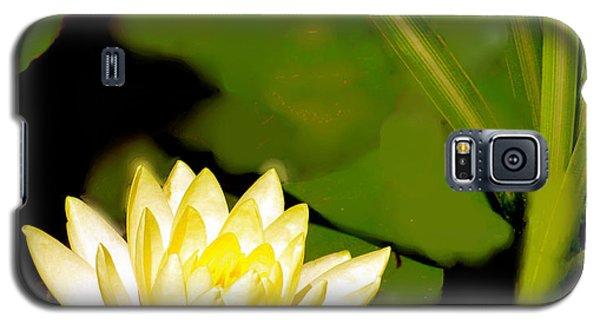 Float Of Elegance  Galaxy S5 Case by Debra     Vatalaro