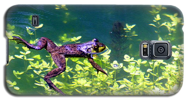 Floating Frog Galaxy S5 Case