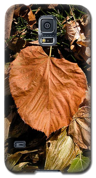 Floating Leaf Galaxy S5 Case