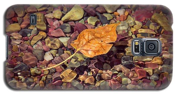 Floating Leaf Galaxy S5 Case