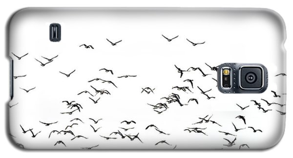 Flock Of Beautiful Migratory Lapwing Birds In Clear Winter Sky I Galaxy S5 Case