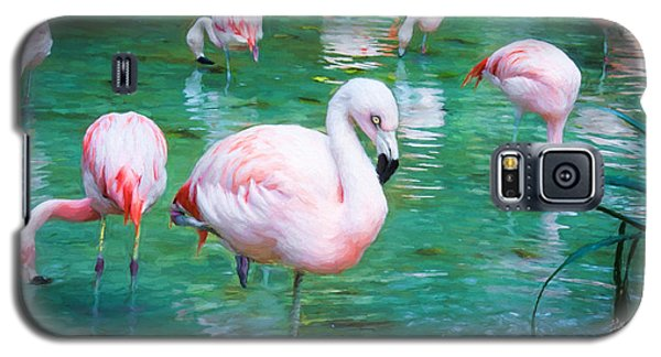 Flock Of Flamingos Galaxy S5 Case by TK Goforth
