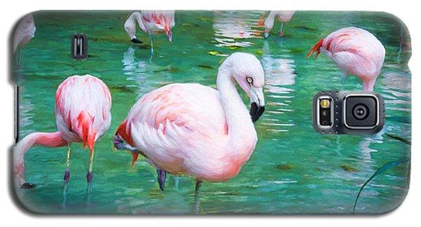 Flock Of Flamingos Galaxy S5 Case