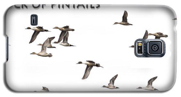 Flock Of Pintails Galaxy S5 Case