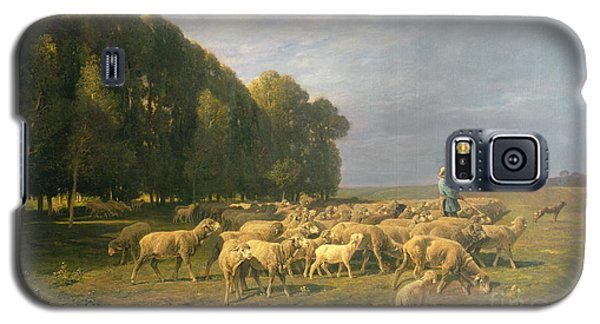 Flock Of Sheep In A Landscape Galaxy S5 Case