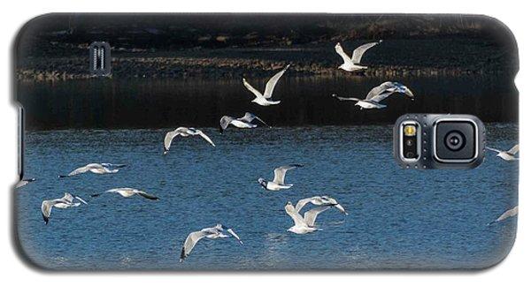 Flock Of Them Galaxy S5 Case