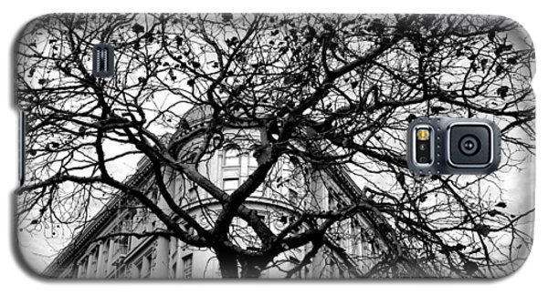 Flood Building - San Francisco - Corner Tree View Black And White Galaxy S5 Case