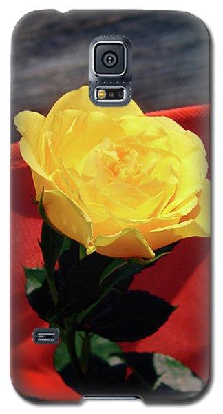 Floral Art 6 Galaxy S5 Case