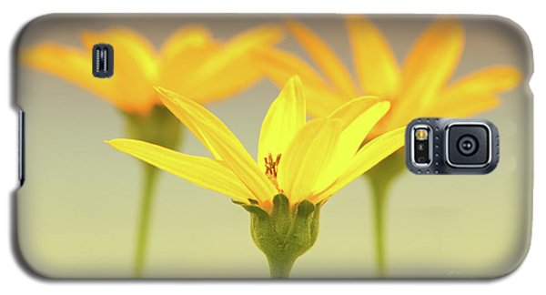 Floral Brilliance Galaxy S5 Case by Anita Oakley