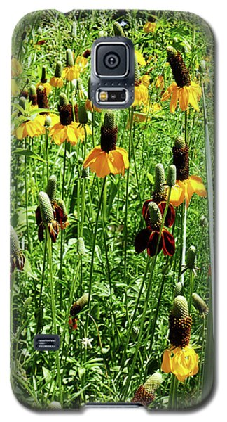 Galaxy S5 Case featuring the photograph Floral by Cynthia Powell