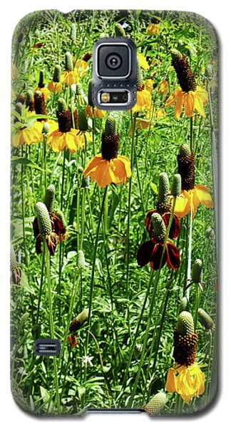 Floral Galaxy S5 Case by Cynthia Powell