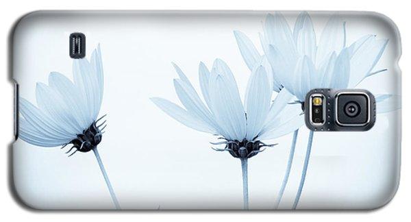 Floral Elegance Galaxy S5 Case by Anita Oakley