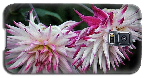 Floral Explosion Galaxy S5 Case