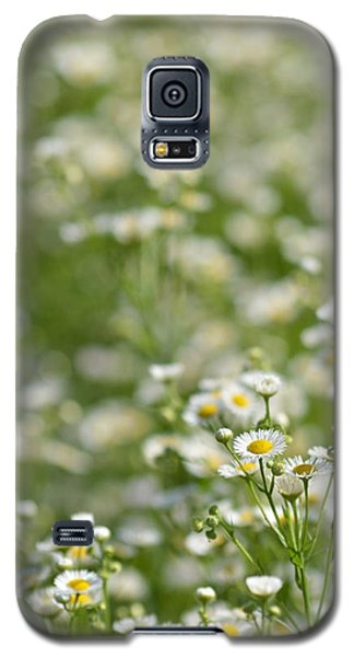 Floral Field #1 Galaxy S5 Case