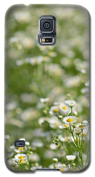 Floral Field #1 Galaxy S5 Case