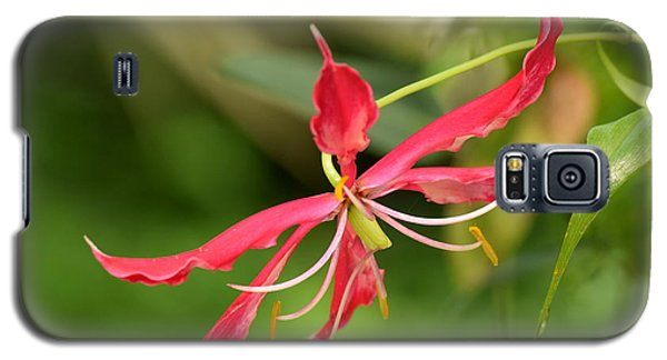 Galaxy S5 Case featuring the photograph Floral Flair by Deborah  Crew-Johnson