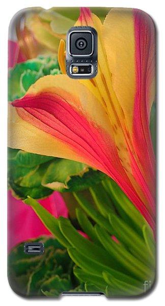 Floral Fusion Galaxy S5 Case