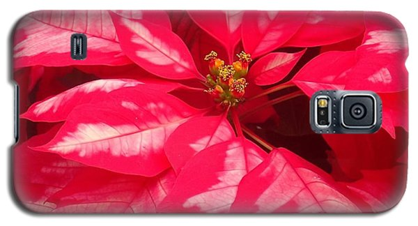 Floral Greetings Galaxy S5 Case