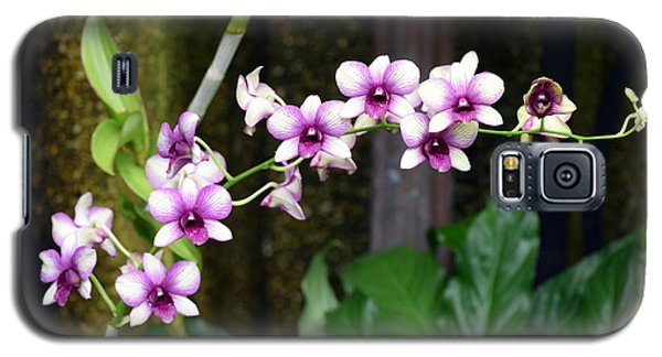 Galaxy S5 Case featuring the photograph Floral Sway by Deborah  Crew-Johnson