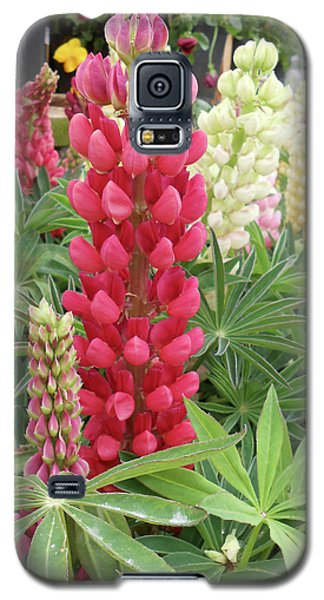 Galaxy S5 Case featuring the photograph Floral2 by Cynthia Powell