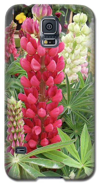 Floral2 Galaxy S5 Case by Cynthia Powell