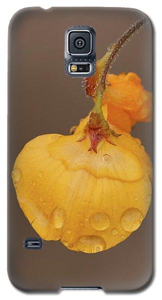 Florida Alicia Galaxy S5 Case