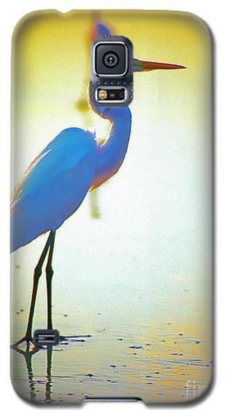 Florida Atlantic Beach Ocean Birds  Galaxy S5 Case