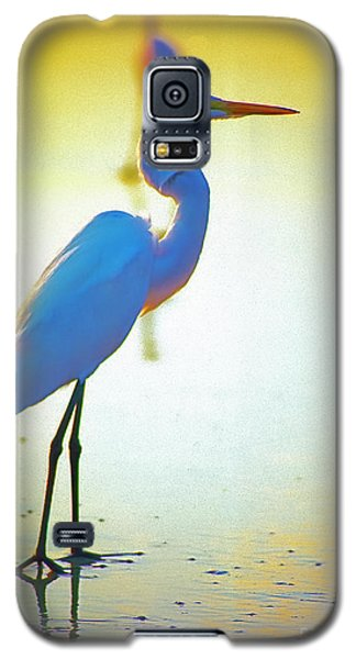 Florida Atlantic Beach Ocean Birds  Galaxy S5 Case