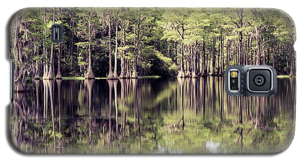 Florida Beauty 10 - Tallahassee Florida Galaxy S5 Case