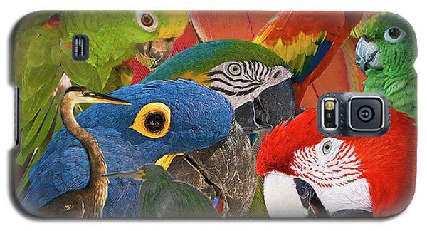Florida Birds Galaxy S5 Case