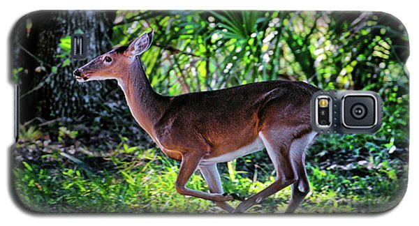Florida Deer Galaxy S5 Case