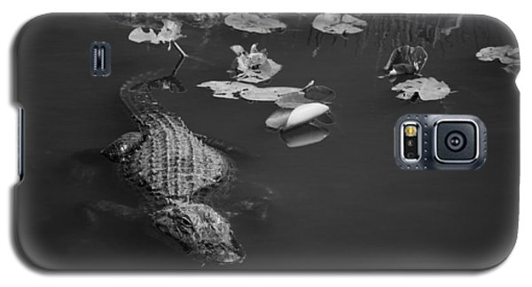 Galaxy S5 Case featuring the photograph Florida Gator by Jason Moynihan