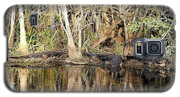 Galaxy S5 Case featuring the photograph Florida Gators - Everglades Swamp by Jerry Battle
