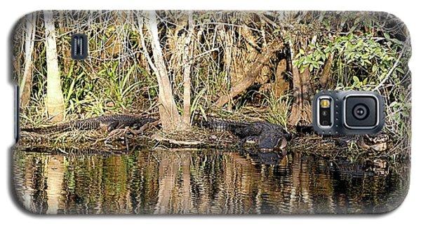 Florida Gators - Everglades Swamp Galaxy S5 Case