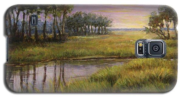 Florida Marsh Sunset Galaxy S5 Case