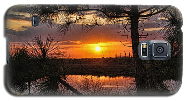 Florida Pine Sunset Galaxy S5 Case