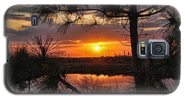 Florida Pine Sunset Galaxy S5 Case by HH Photography of Florida