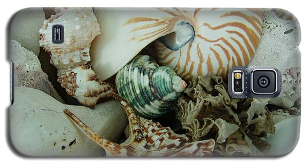 Florida Sea Shells Galaxy S5 Case