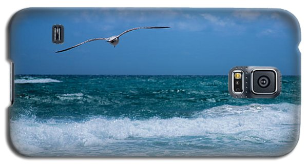 Galaxy S5 Case featuring the photograph Florida Seagull In Flight by Jason Moynihan