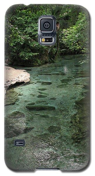 Florida Spring Run Galaxy S5 Case by Peg Urban