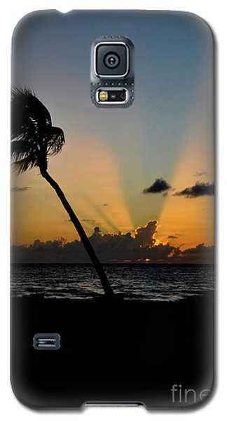 Galaxy S5 Case featuring the photograph Florida Sunrise Palm by Kelly Wade