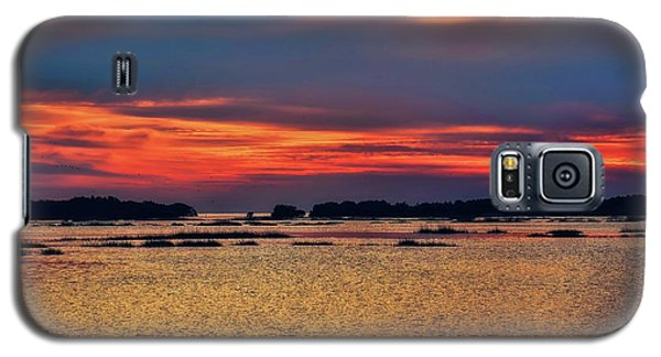Galaxy S5 Case featuring the photograph Florida West Coast  by Louis Ferreira