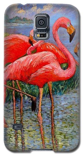 Florida's Free Flamingo's Galaxy S5 Case by Charles Munn