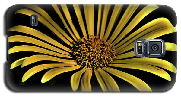 Flower 1 Galaxy S5 Case by Lawrence Christopher