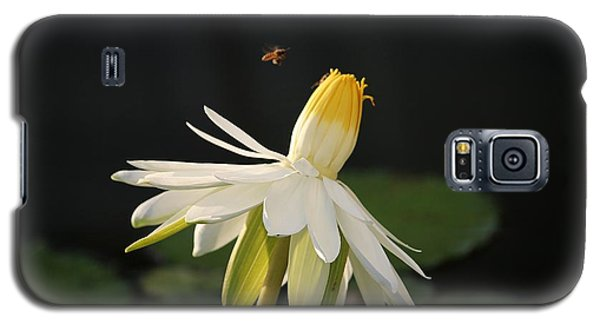 Flower And Bee In Singapore Galaxy S5 Case
