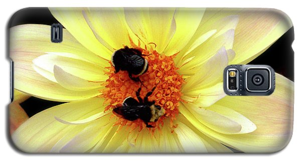 Flower And Bees Galaxy S5 Case